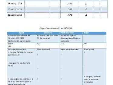 plan personnalisé coaching sportif à distance Lyon